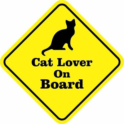 cat-lover-on-board